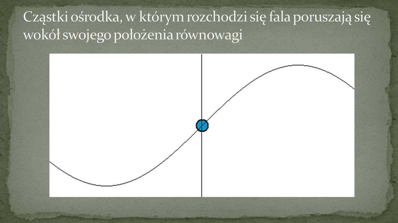 Cząstki ośrodka, w którym rozchodzi się fala poruszają się wokół swojego położenia równowagi