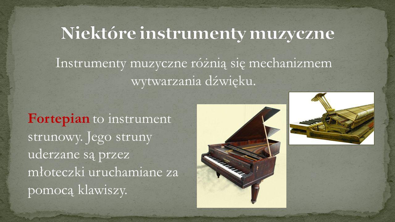 Niektóre instrumenty muzyczne