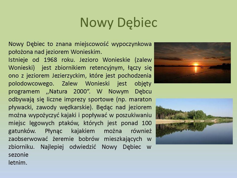 Nowy Dębiec Nowy Dębiec to znana miejscowość wypoczynkowa położona nad jeziorem Wonieskim.