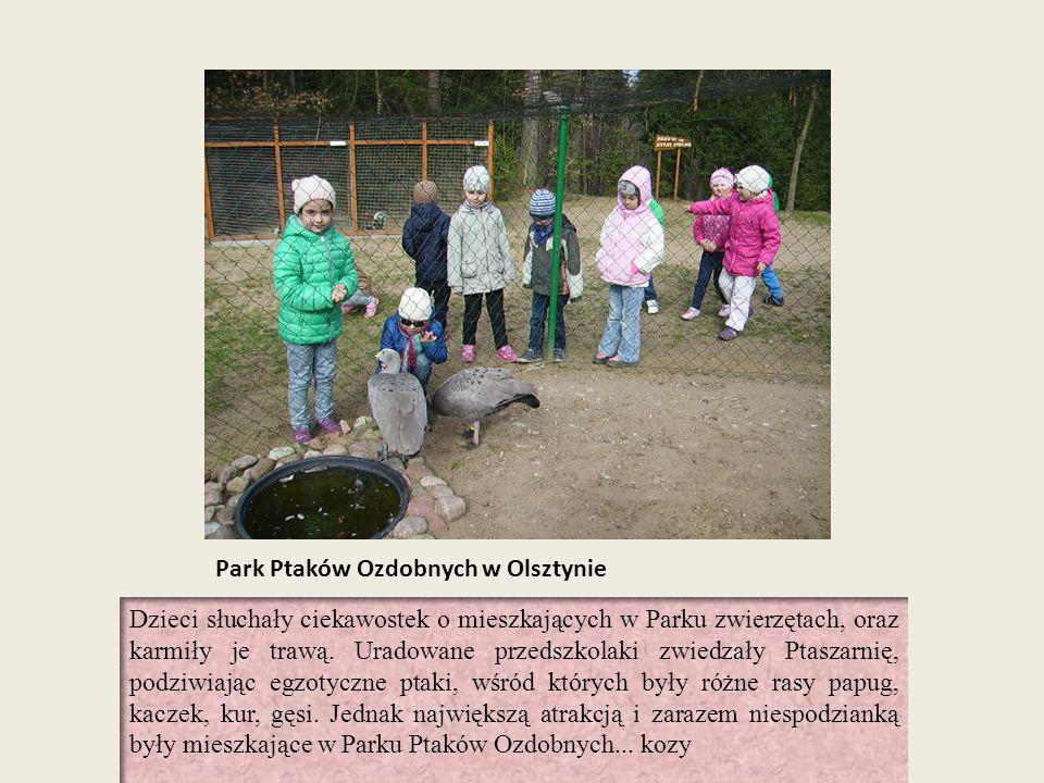 Park Ptaków Ozdobnych w Olsztynie