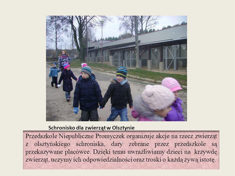 Schronisko dla zwierząt w Olsztynie