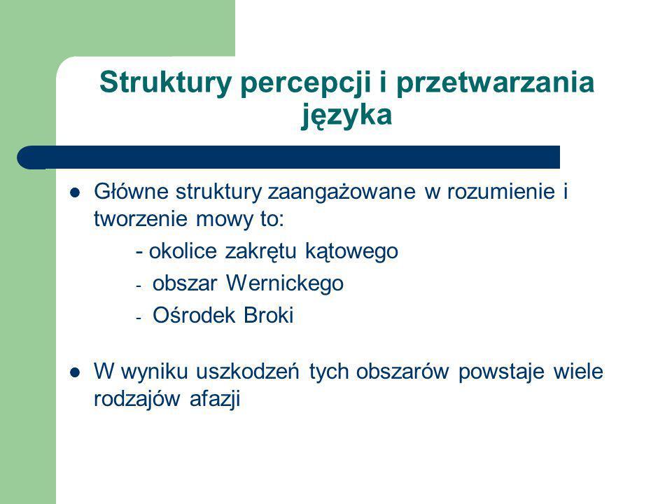 Struktury percepcji i przetwarzania języka