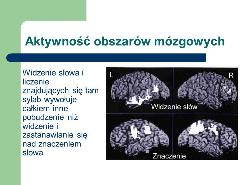 Aktywność obszarów mózgowych