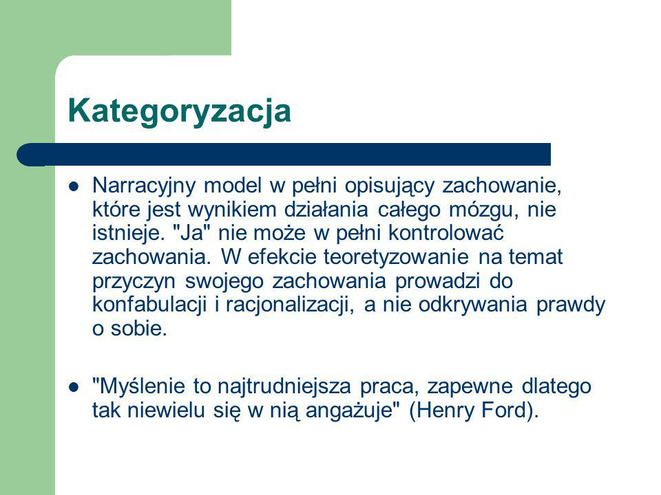 Kategoryzacja