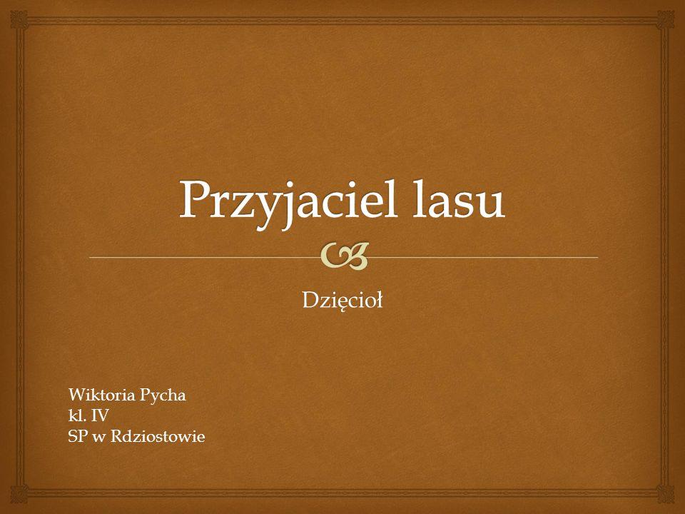 Przyjaciel lasu Dzięcioł Wiktoria Pycha kl. IV SP w Rdziostowie