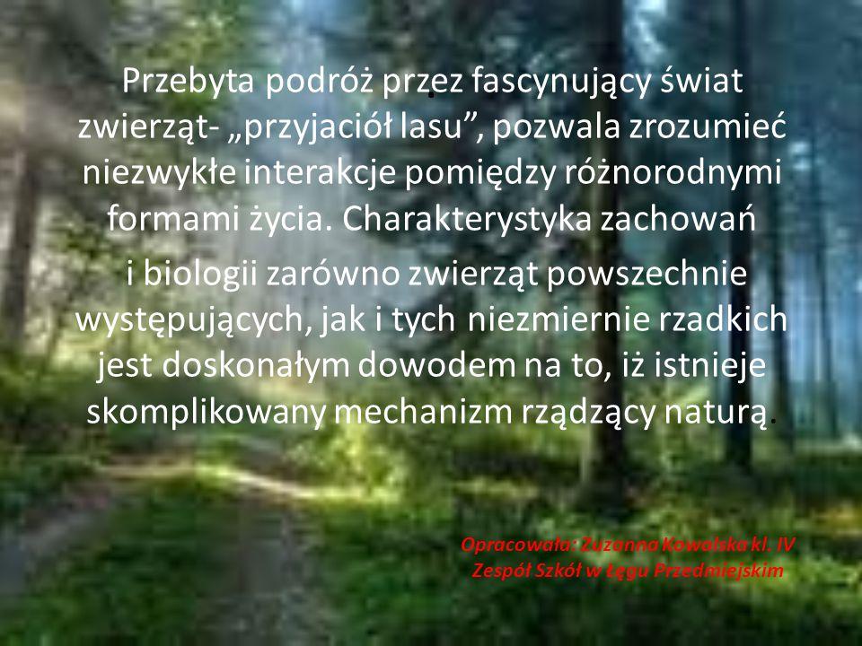 Opracowała: Zuzanna Kowalska kl. IV Zespół Szkół w Łęgu Przedmiejskim