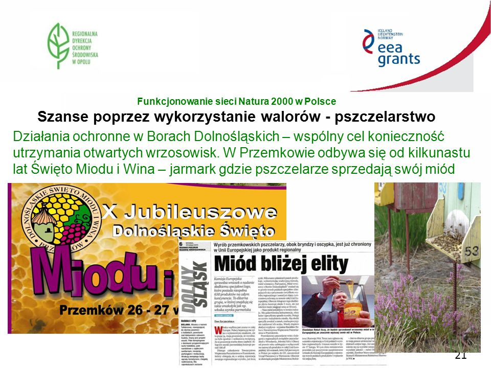 Funkcjonowanie sieci Natura 2000 w Polsce Szanse poprzez wykorzystanie walorów - pszczelarstwo