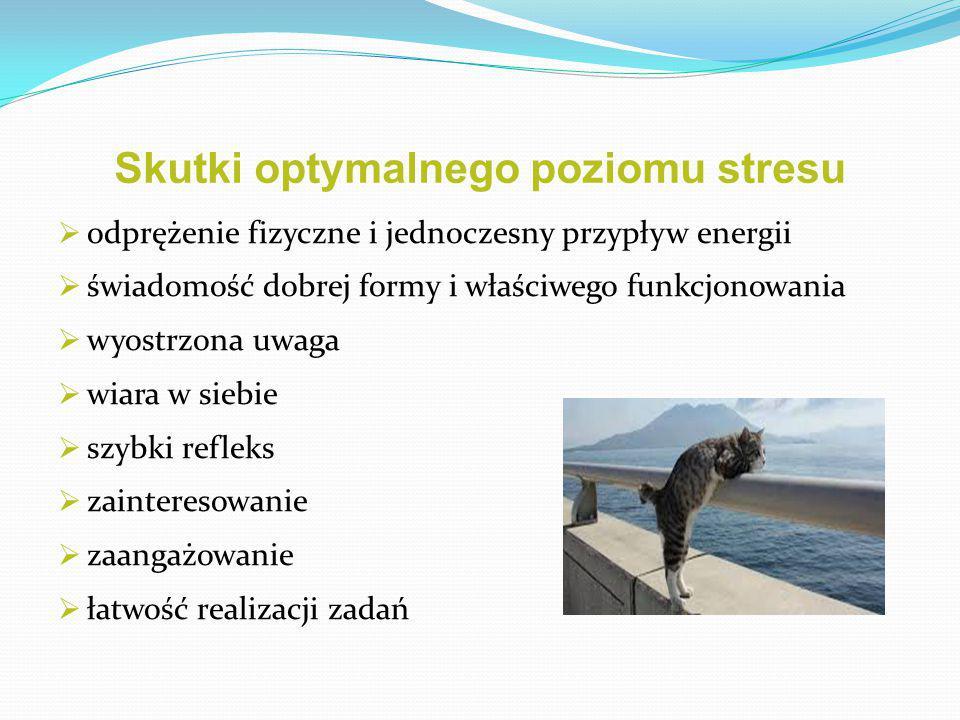 Skutki optymalnego poziomu stresu