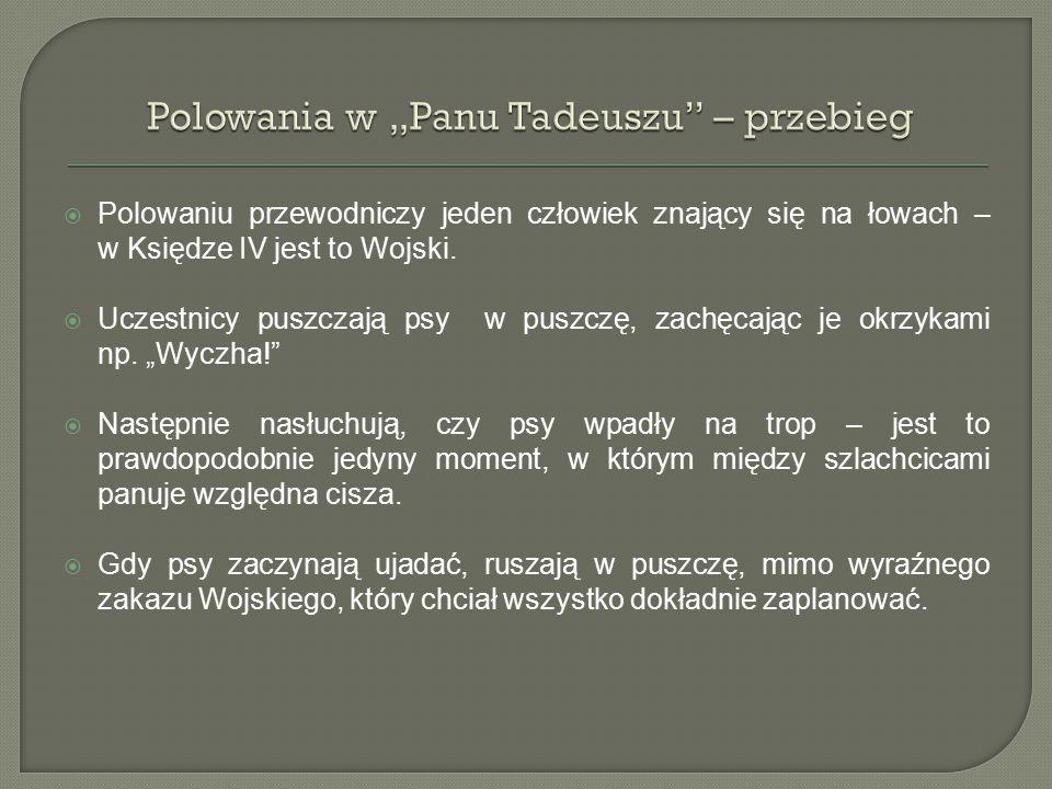 """Polowania w """"Panu Tadeuszu – przebieg"""
