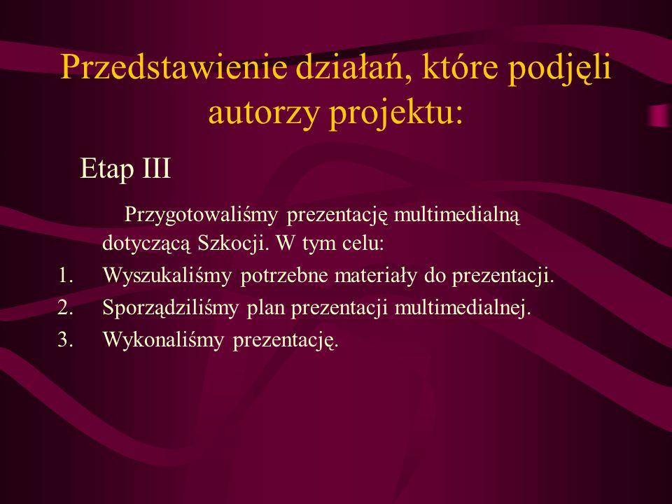 Przedstawienie działań, które podjęli autorzy projektu: