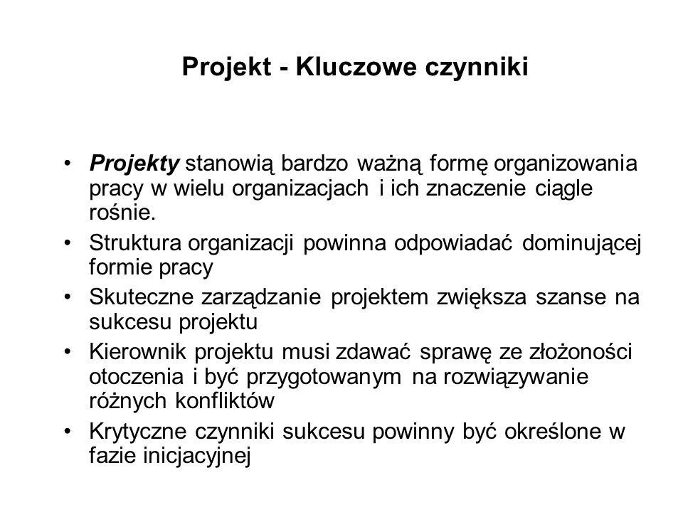 Projekt - Kluczowe czynniki