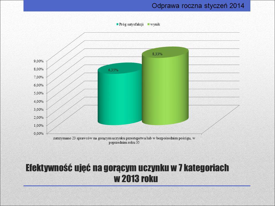 Efektywność ujęć na gorącym uczynku w 7 kategoriach w 2013 roku