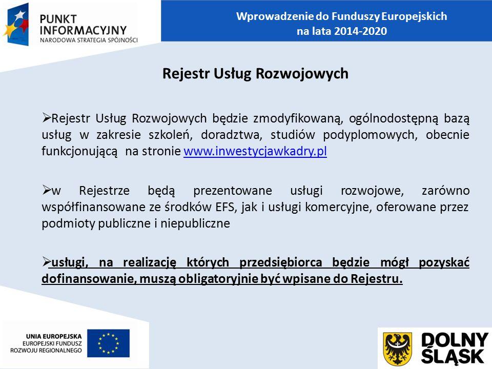 Wprowadzenie do Funduszy Europejskich Rejestr Usług Rozwojowych