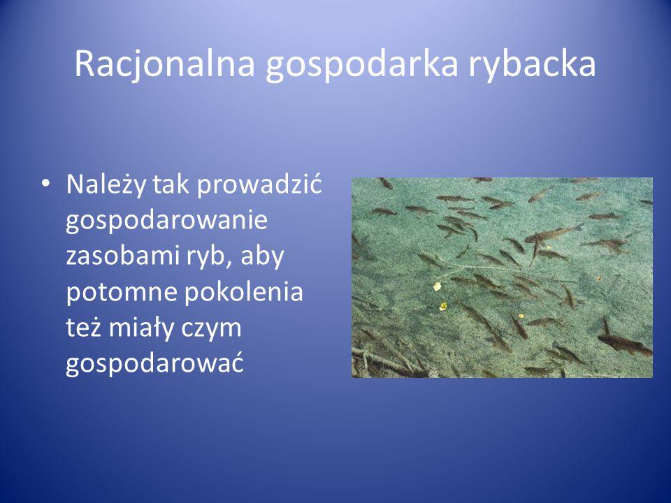 Racjonalna gospodarka rybacka