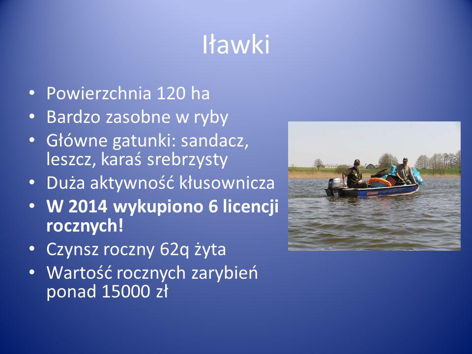 Iławki Powierzchnia 120 ha Bardzo zasobne w ryby
