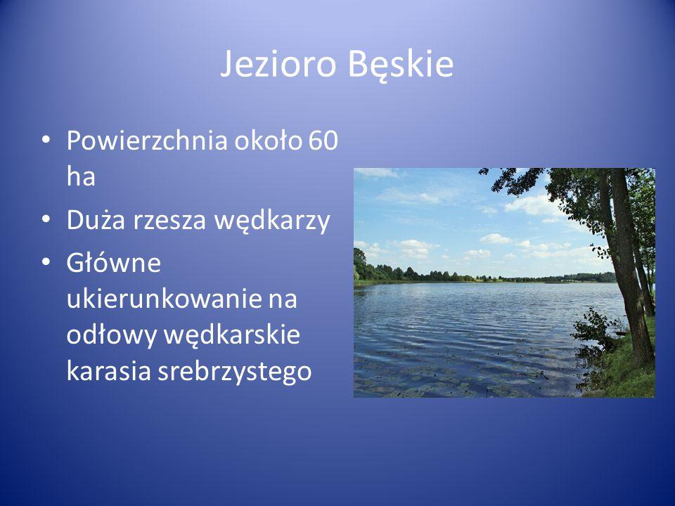 Jezioro Bęskie Powierzchnia około 60 ha Duża rzesza wędkarzy