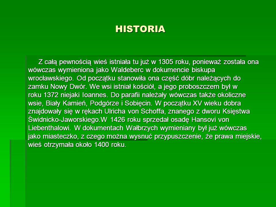 HISTORIA Z całą pewnością wieś istniała tu już w 1305 roku, ponieważ została ona. wówczas wymieniona jako Waldeberc w dokumencie biskupa.