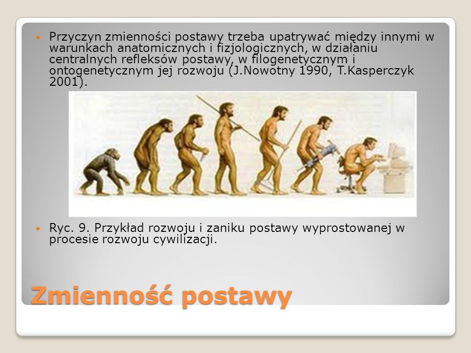 Przyczyn zmienności postawy trzeba upatrywać między innymi w warunkach anatomicznych i fizjologicznych, w działaniu centralnych refleksów postawy, w filogenetycznym i ontogenetycznym jej rozwoju (J.Nowotny 1990, T.Kasperczyk 2001).