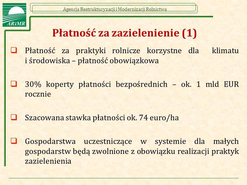 Płatność za zazielenienie (1)