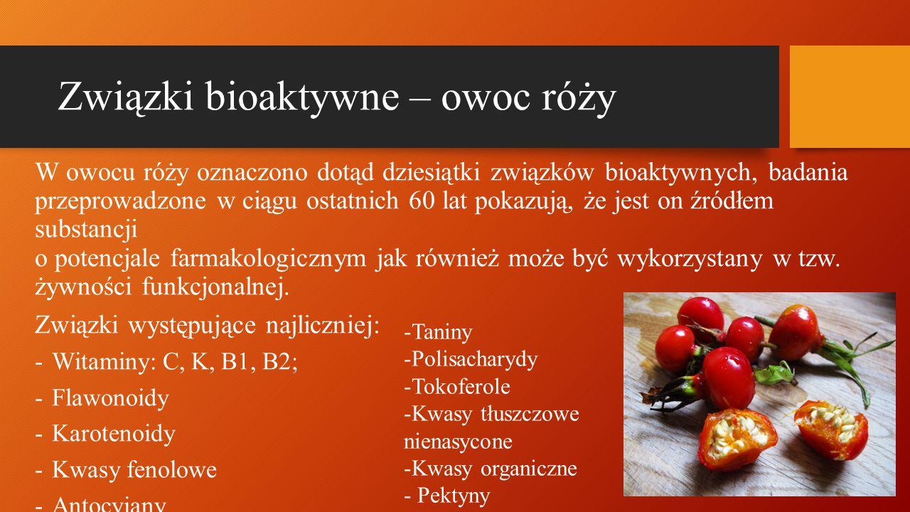Związki bioaktywne – owoc róży