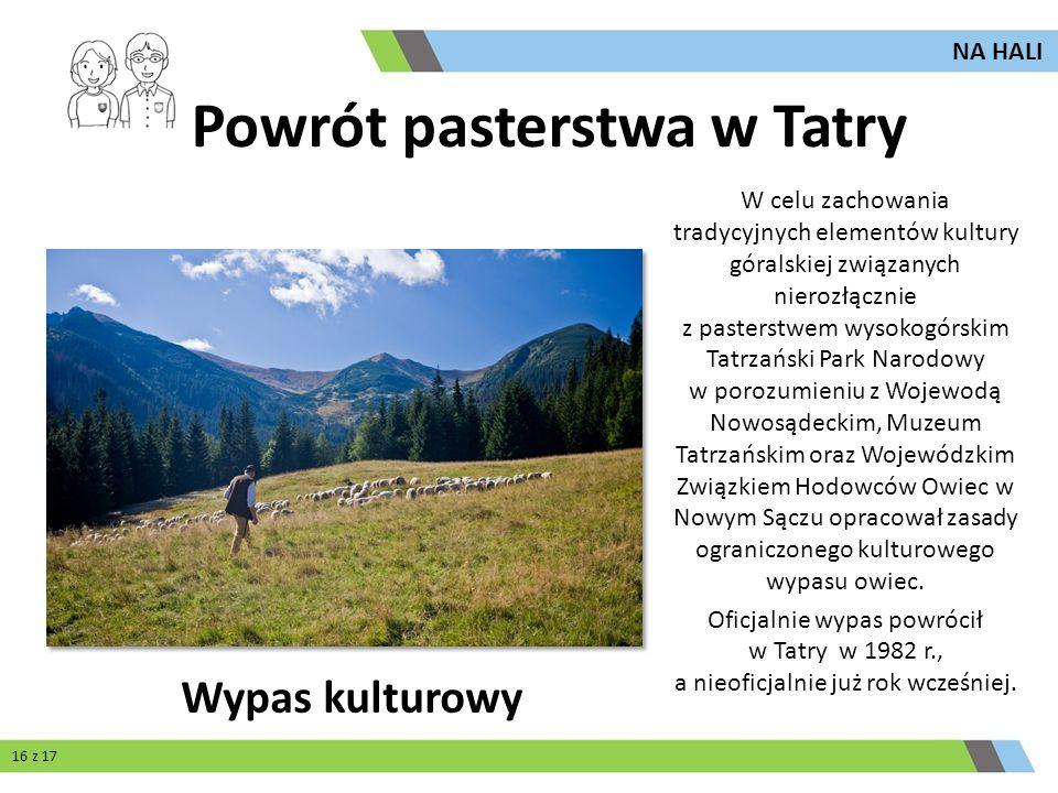 Powrót pasterstwa w Tatry