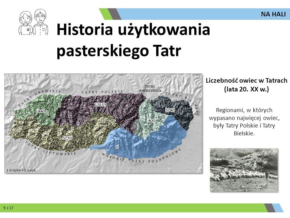 Liczebność owiec w Tatrach (lata 20. XX w.)