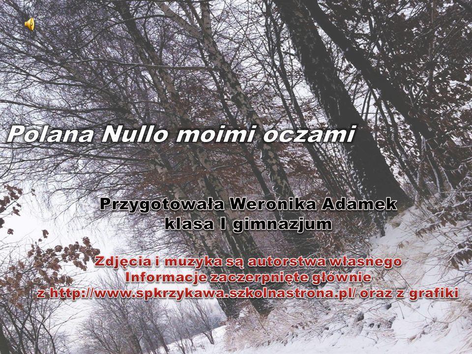 Przygotowała Weronika Adamek klasa I gimnazjum