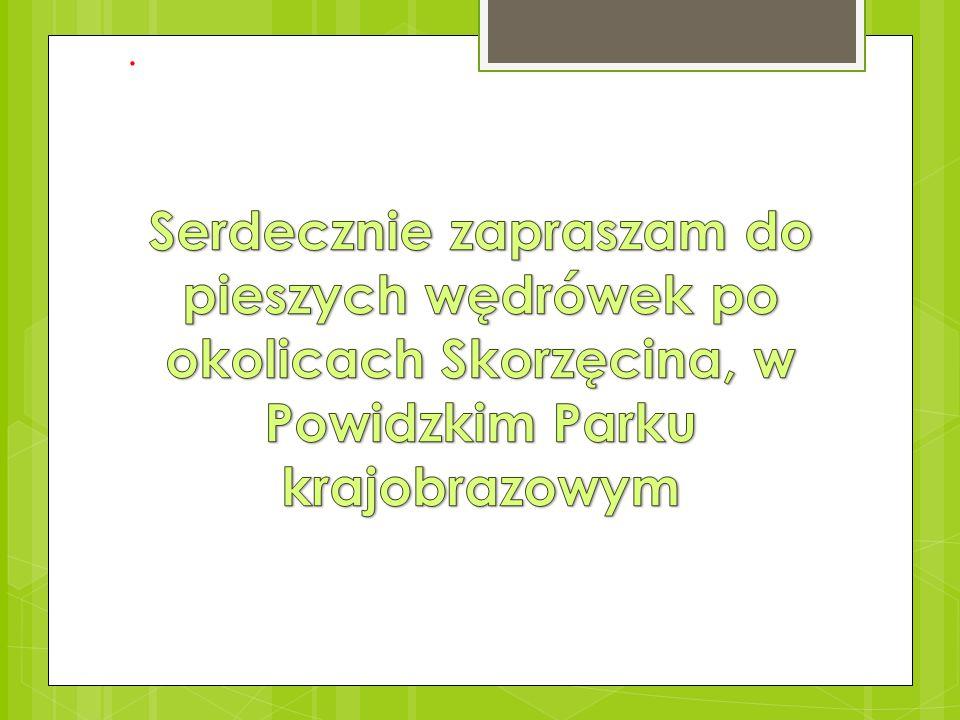. Serdecznie zapraszam do pieszych wędrówek po okolicach Skorzęcina, w Powidzkim Parku krajobrazowym.
