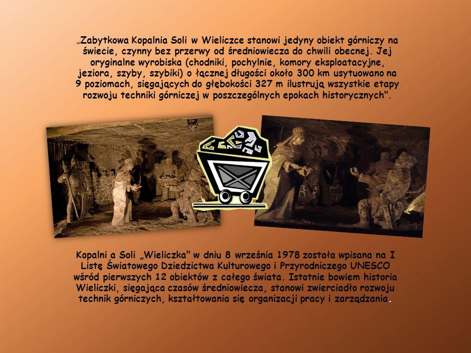 """""""Zabytkowa Kopalnia Soli w Wieliczce stanowi jedyny obiekt górniczy na świecie, czynny bez przerwy od średniowiecza do chwili obecnej. Jej oryginalne wyrobiska (chodniki, pochylnie, komory eksploatacyjne, jeziora, szyby, szybiki) o łącznej długości około 300 km usytuowano na 9 poziomach, sięgających do głębokości 327 m ilustrują wszystkie etapy rozwoju techniki górniczej w poszczególnych epokach historycznych ."""