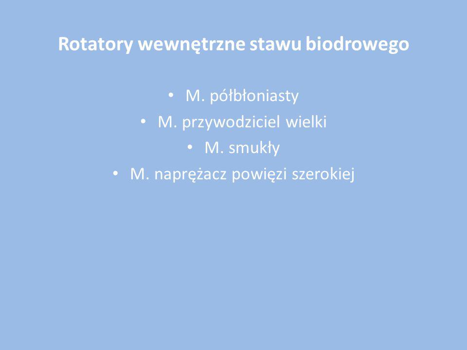 Rotatory wewnętrzne stawu biodrowego