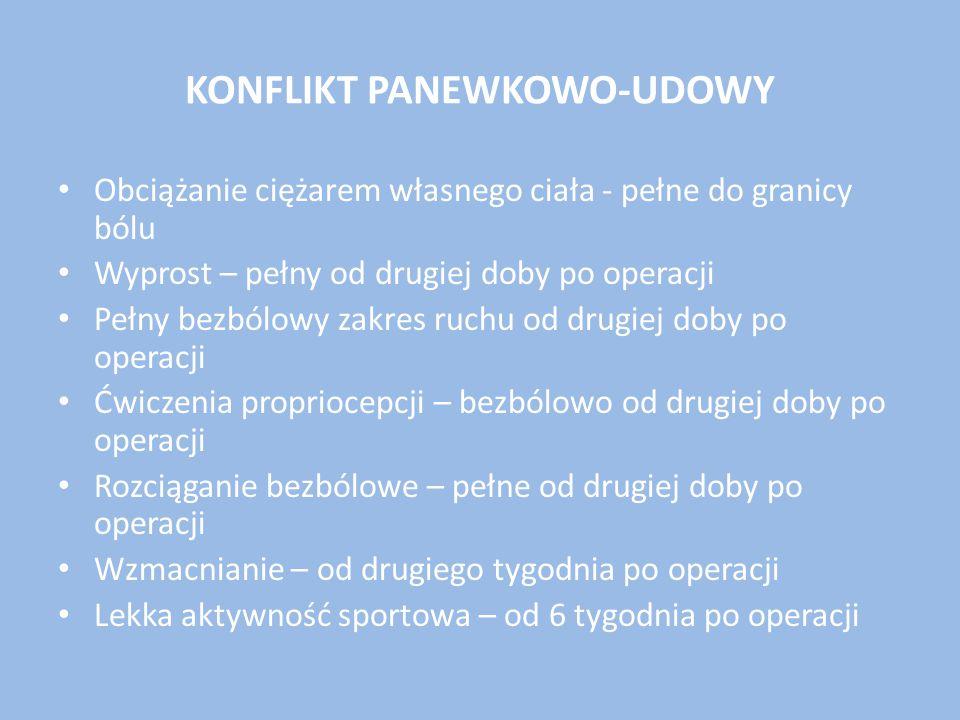 KONFLIKT PANEWKOWO-UDOWY