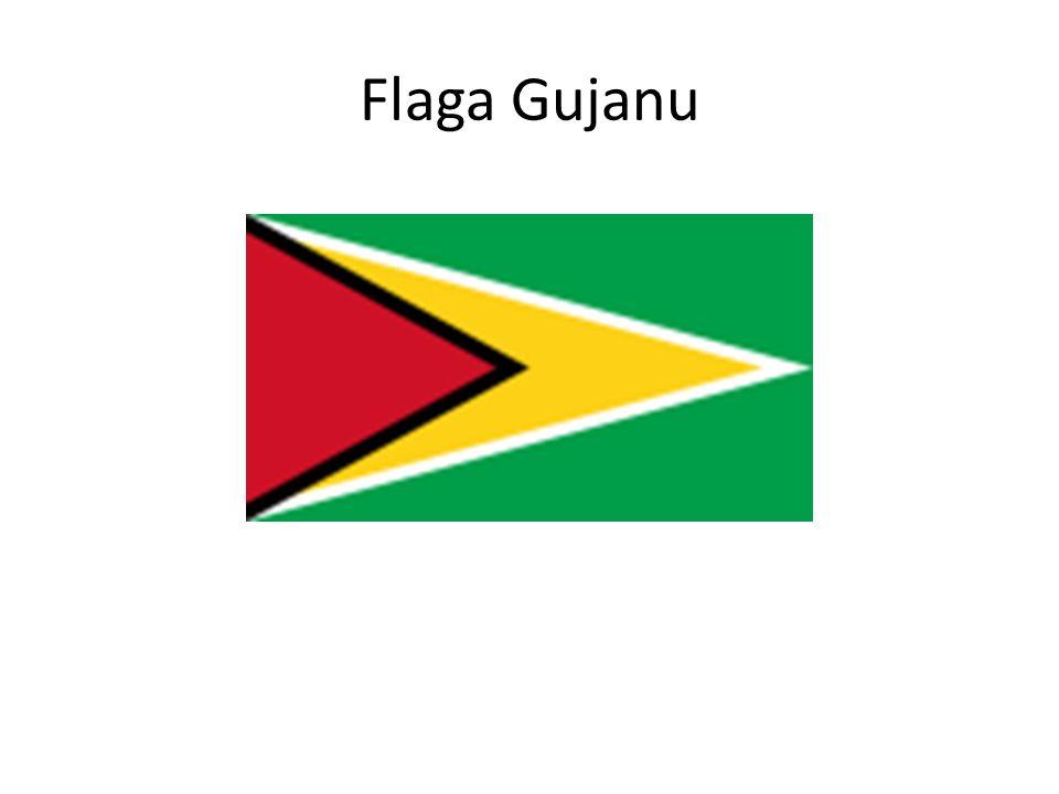Flaga Gujanu