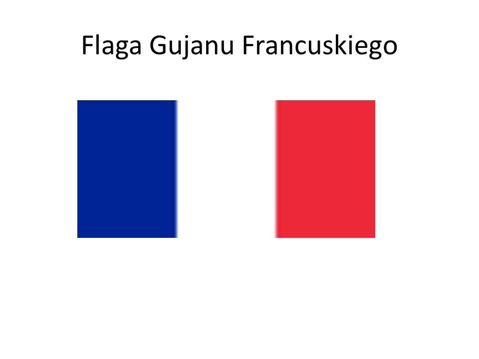 Flaga Gujanu Francuskiego
