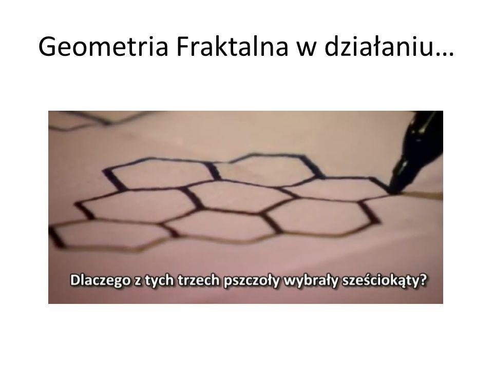 Geometria Fraktalna w działaniu…