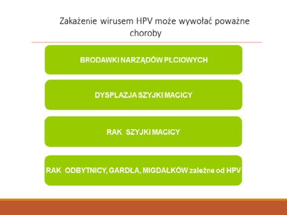 Wirus HPV to nie tylko rak szyjki macicy, czy inne nowotwory o których powiedziano wcześniej. To również brodawki narządów płciowych , które występują u co 3 pacjenta zgłaszającego się do poradni dermatologicznej. Leczenie brodawek płciowych jet barzo długie i bywa bolesne.