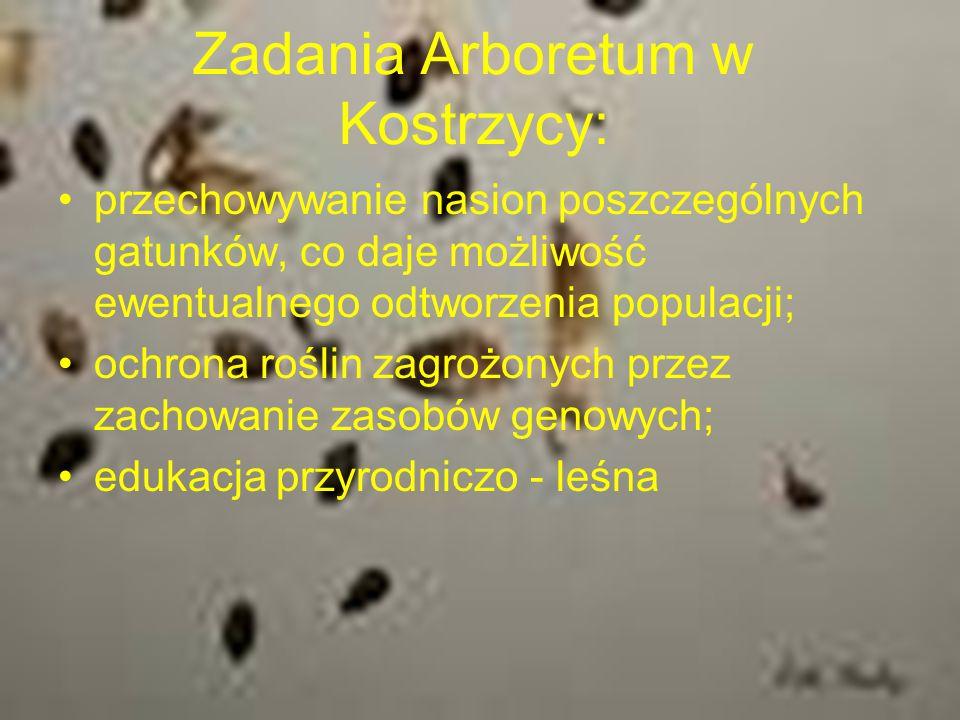 Zadania Arboretum w Kostrzycy: