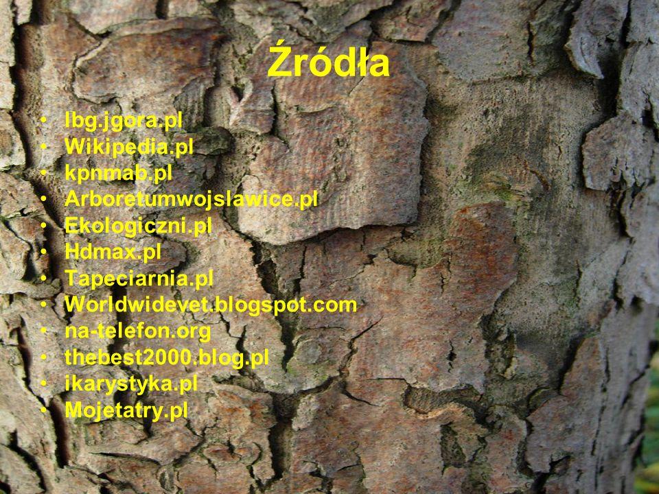 Źródła lbg.jgora.pl Wikipedia.pl kpnmab.pl Arboretumwojslawice.pl