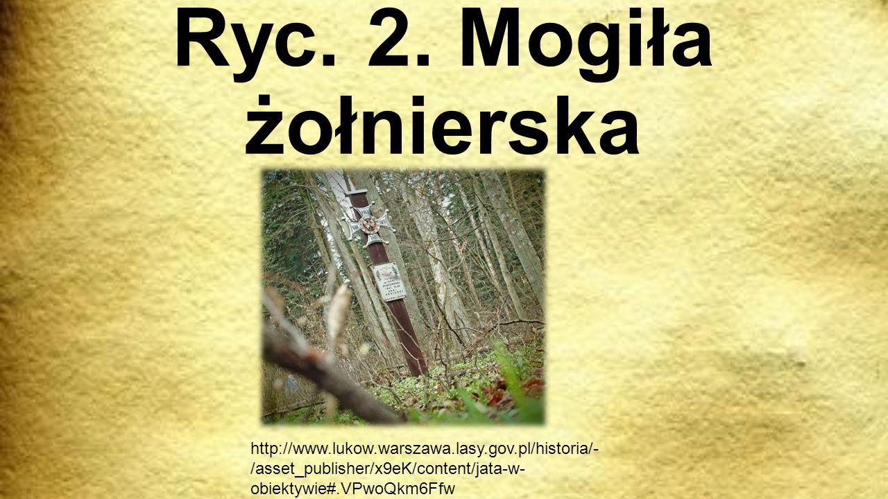 Ryc. 2.