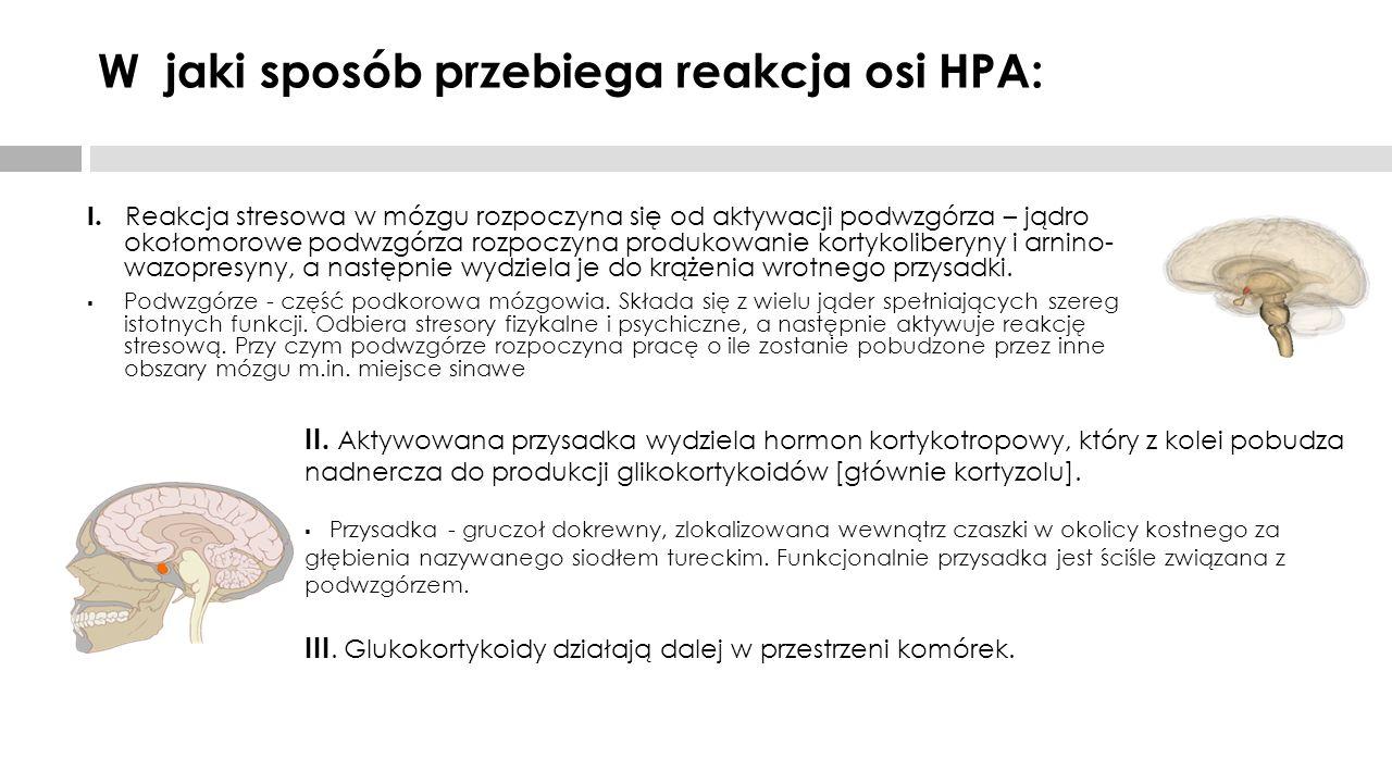 W jaki sposób przebiega reakcja osi HPA: