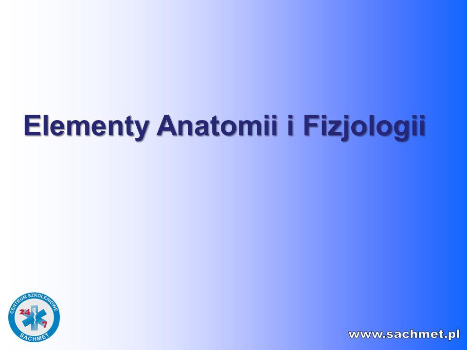 Elementy Anatomii i Fizjologii