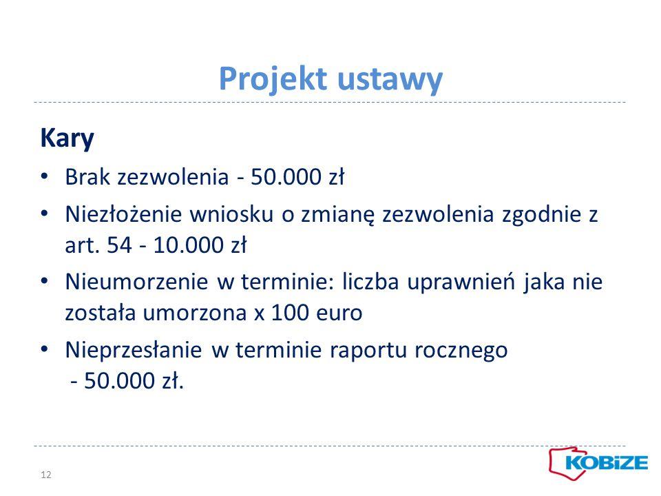 Projekt ustawy Kary Brak zezwolenia - 50.000 zł