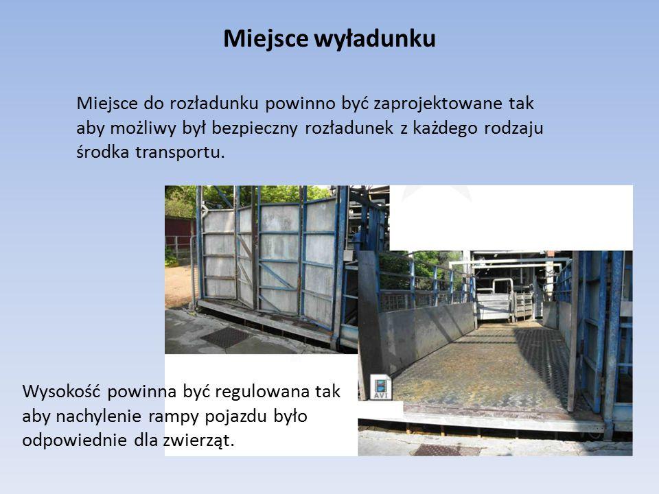 Miejsce wyładunku Miejsce do rozładunku powinno być zaprojektowane tak aby możliwy był bezpieczny rozładunek z każdego rodzaju środka transportu.