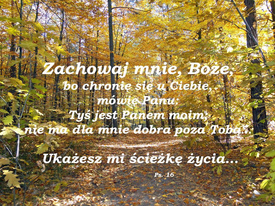 Zachowaj mnie, Boże, bo chronię się u Ciebie, mówię Panu: Tyś jest Panem moim; nie ma dla mnie dobra poza Tobą… Ukażesz mi ścieżkę życia… Ps.