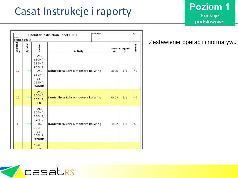 Casat Instrukcje i raporty