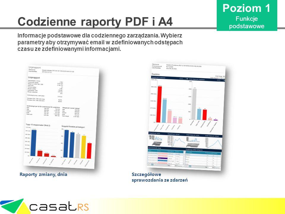 Codzienne raporty PDF i A4