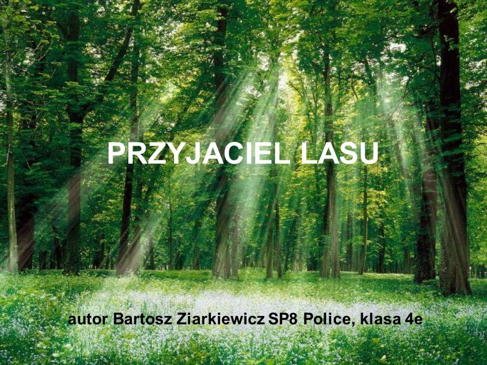autor Bartosz Ziarkiewicz SP8 Police, klasa 4e