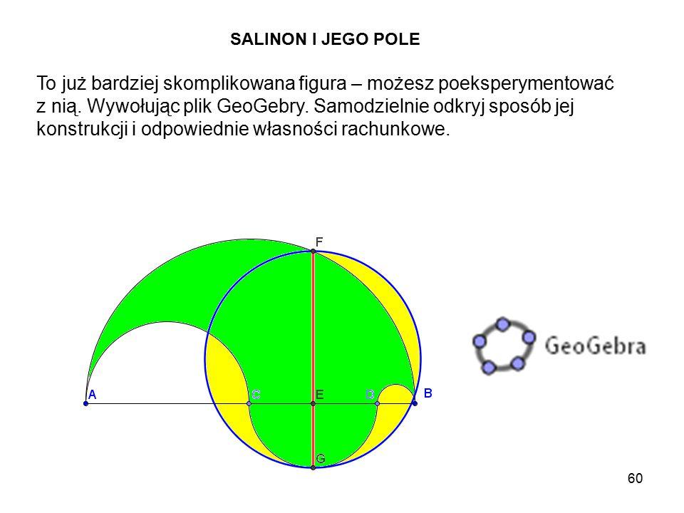 SALINON I JEGO POLE