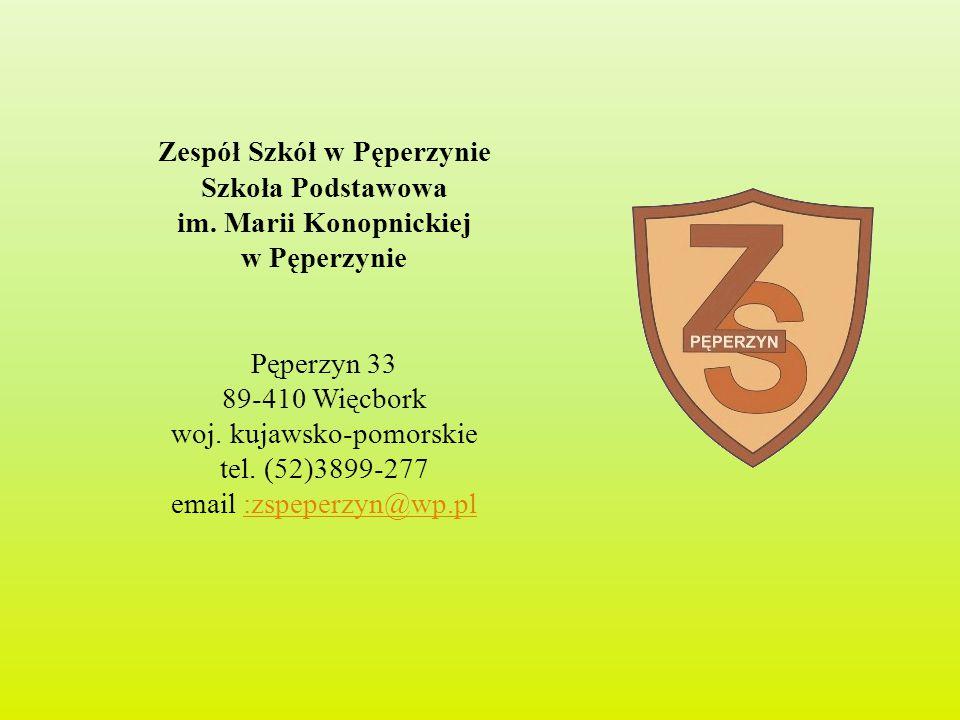 Zespół Szkół w Pęperzynie