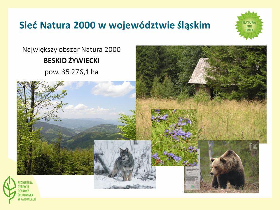 Największy obszar Natura 2000