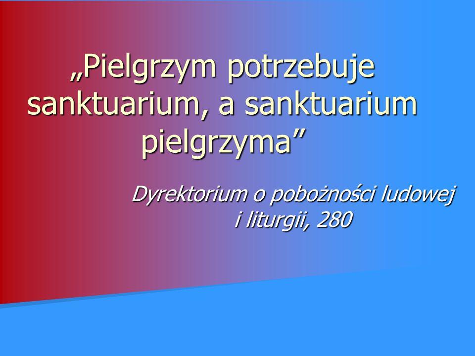 """""""Pielgrzym potrzebuje sanktuarium, a sanktuarium pielgrzyma"""